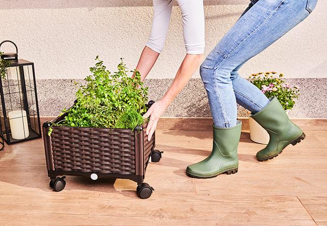 Jardiniera monobloc Grow